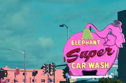 Pink Elephant Sign Seattle, WA