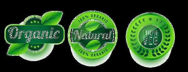 organicnaturalvegproductlabelssetdesign_