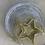 Thumbnail: Moon Star ⭐️ Dish