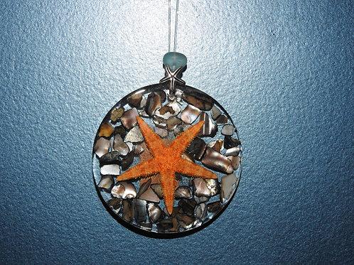 Starfish Abalone