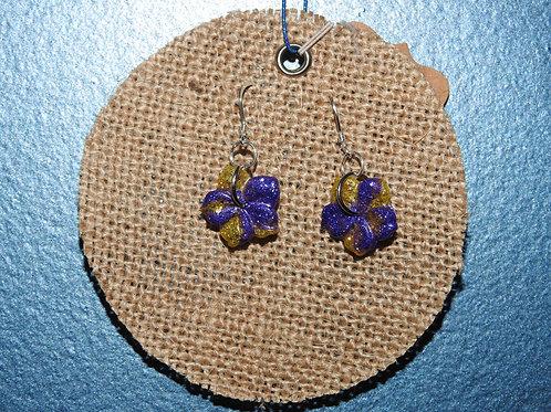 Purple and Yellow Hibiscus