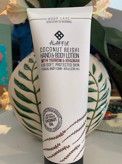 Coconut Reishi w/ Yarrow & Kpagnan