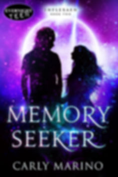Memory-seeker-complete.jpg