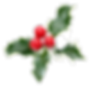 christmas holly_edited.png