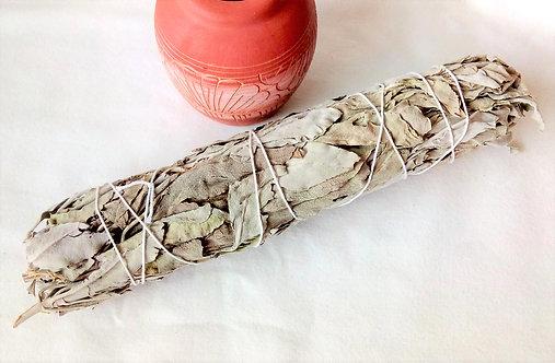 "Californian White Sage 8-9"" Smudge Stick"