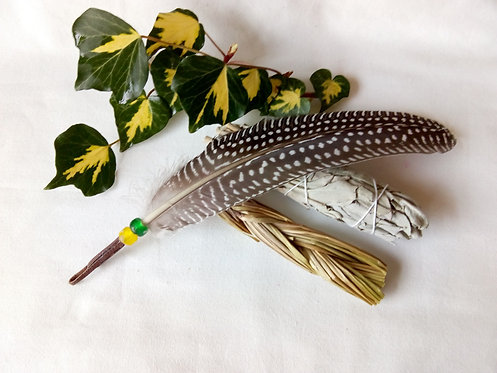 'Many Eyes' smudging feather set
