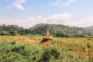 Atewa forest, Ghana