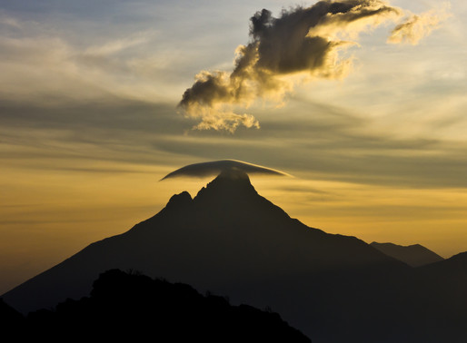 Virunga: A 'Gallic' and persistent park in eastern Congo