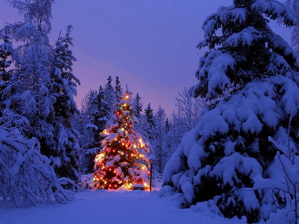 christmas-scene.jpg