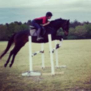 Sale horse wells having a super jump sch
