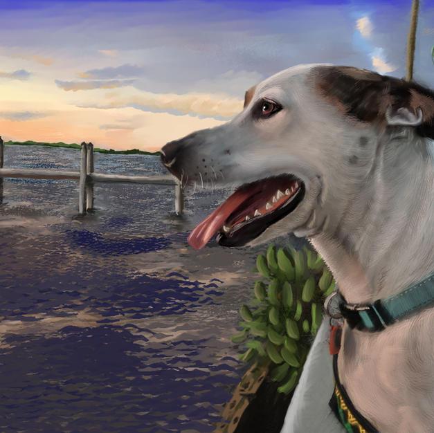 dog-watersmall-5c.jpg
