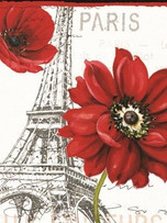 Rec. Memo Block - Red Paris
