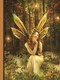 Journal - Fairy Vale