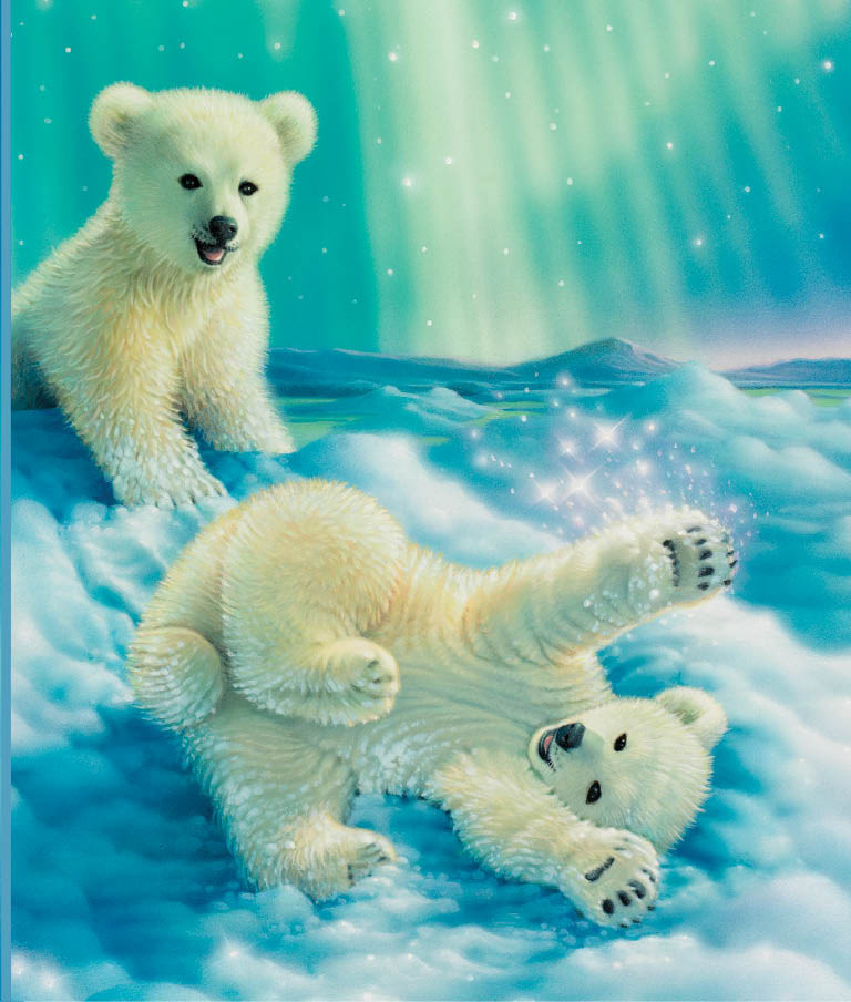 Lock Journal - Polar Bears