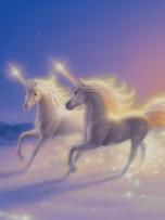 Journal - Unicorn