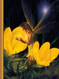 Small Journal - Night Fairy