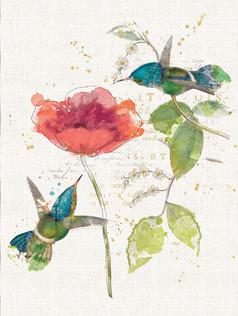 Journal - Teal Hummingbird