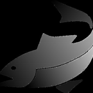 fish-311077_960_720.png