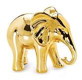 elefante dourado.png