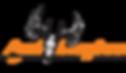 Ani-Logics-Logo.png