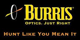 Burris_Web_logo.jpg