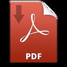 pdf-icon-symbol-5-300x300.png