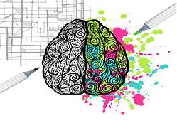 cerebro-cores-aprendizagem.png
