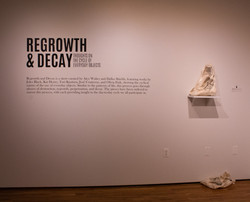 Regrowth and Decay Decal