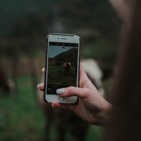 Social Media and Sex Trafficking : An Interview With a Survivor