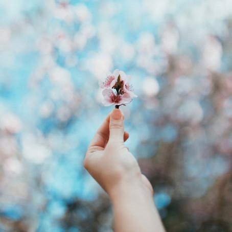 Spring Cleaning: Mind + Spirit