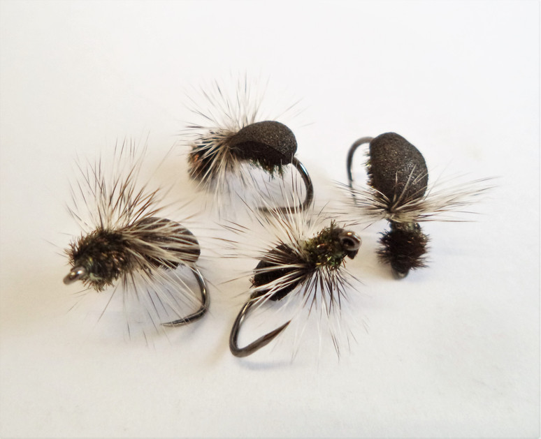 Dry fly nibbles