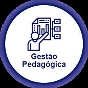 GESTÃO PEDAGÓGICA (1).png