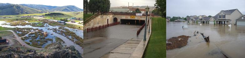 Flood Collage