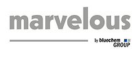 Logo_marvelous_byBCG_grey-COLOR.png