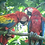 Thumbnail: BIRD WATCHING TOURS