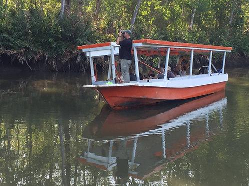 Tarcoles River and Mangrove Cruise Tour