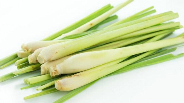 Lemon grass/ citronela