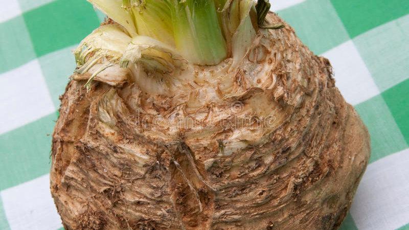 Raiz de apio o Celery