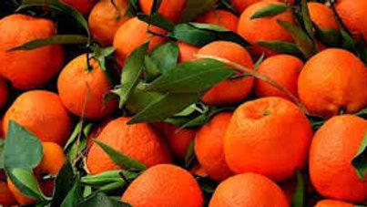Mandarina de importación