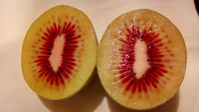 Kiwi Red