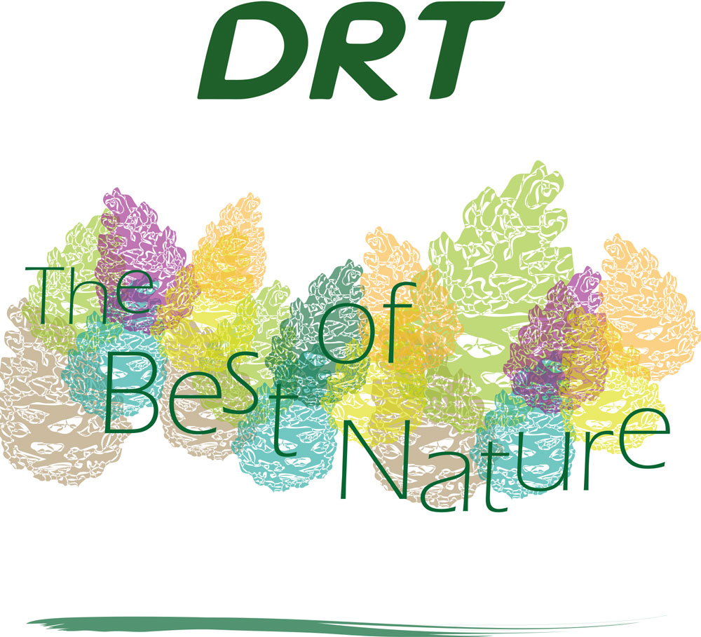 DRT2_LINGETTES_15x17-2
