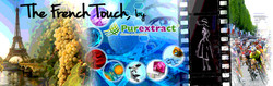 DRT_FRENCH_TOUCH_D_09-16