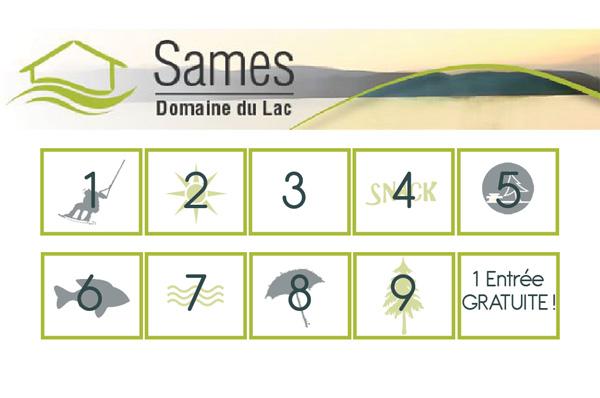 CF_SAMES_V