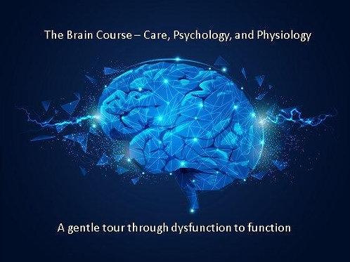 The Brain Course