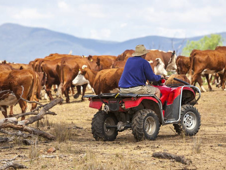 Farm workplace health and safety must be a priority