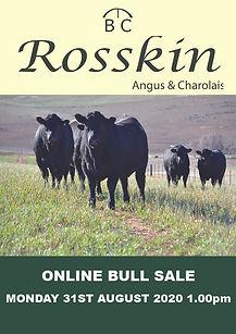 Rosskin Front Cover 2020.jpg