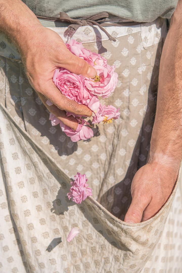 photographe-provence-parfum-ladoucesauvagerie-09