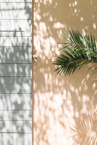 photographe-art-de-vivre-provence-ladoucesauvagerie-42