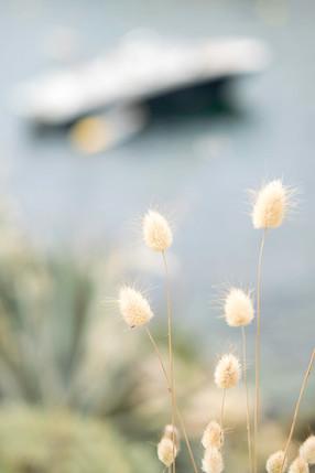 photographe-art-de-vivre-provence-ladoucesauvagerie-40