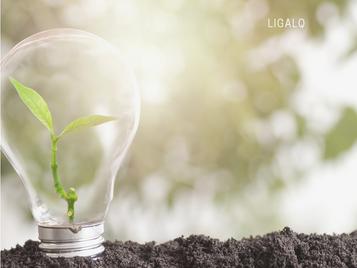 Os critérios ESG: Investimentos de impacto!
